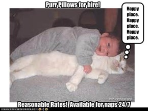 Working Kitteh sacrifices dignity to pay teh bills.