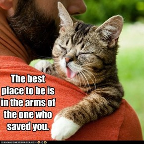 The best place to be is in the arms of the one who saved you.