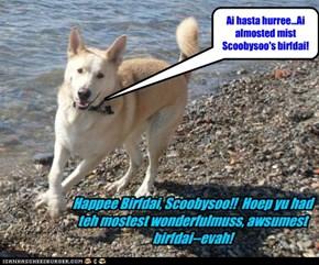 Happee Birfdai, Scoobysoo!