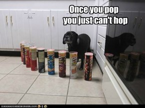 Once you pop   you just can't hop