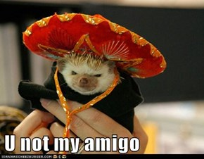 U not my amigo