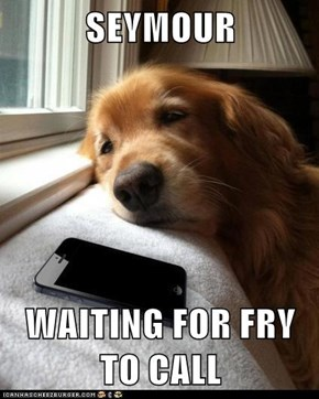 SEYMOUR  WAITING FOR FRY TO CALL