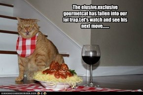 Next on Mysterious Lolcats of teh World...