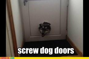 Doggy doors?
