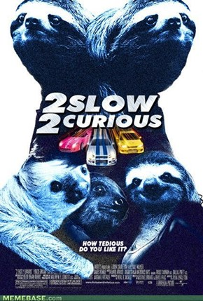 Sloth diesel