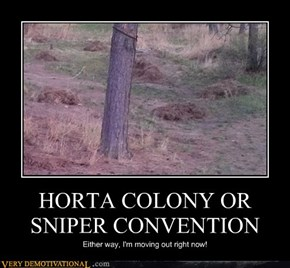 HORTA COLONY OR SNIPER CONVENTION