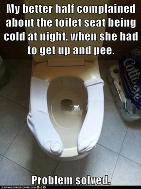 My better half complained about the toilet seat being cold at night, when she had to get up and pee.  Problem solved.