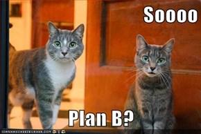 Soooo  Plan B?