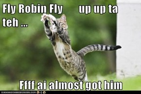 Fly Robin Fly       up up ta teh ...  Ffff ai almost got him