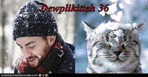 Dewplikitteh 36