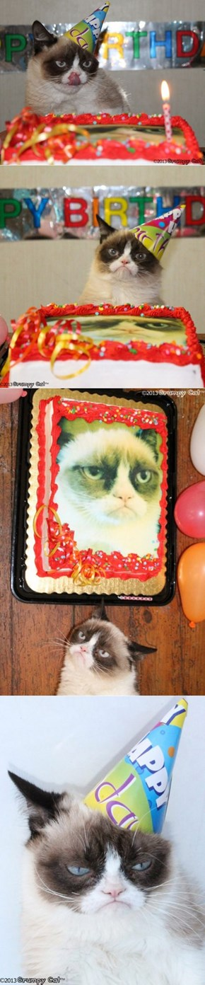 Grumpy Cat Turns One Today!