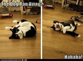 The Dog Ran Away?  Hahaha!