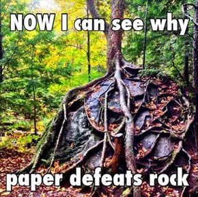 Rock, Tree, Scissors