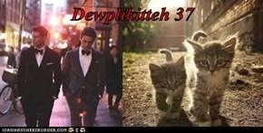 Dewplikitteh 37