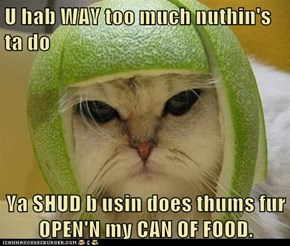 U hab WAY too much nuthin's ta do  Ya SHUD b usin does thums fur   OPEN'N my CAN OF FOOD.