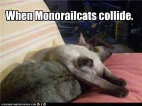 When Monorailcats Collide