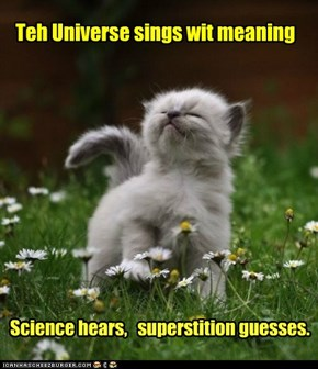 Universe sings wit meaning
