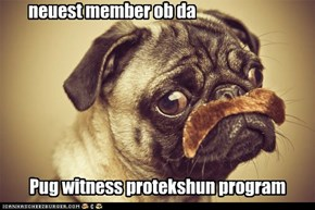 Pug witness protekshun program
