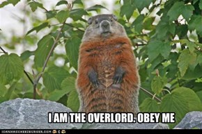 I AM THE OVERLORD. OBEY ME