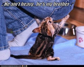 ♪He ain't heavy.. he's my brother ♪'