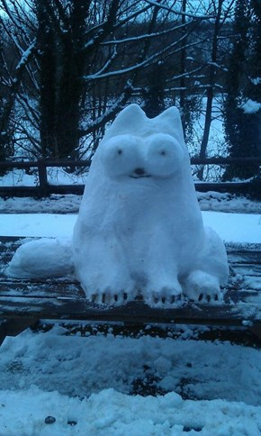 Simon's (Snow) Cat