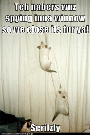 Teh nabers wuz spying inna winnow so we close its fur ya!  Serilzly