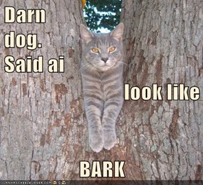 Darn                                    dog.                                                   Said ai  look like BARK