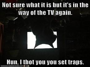 Not sure what it is but it's in the way of the TV again.  Hun, I thot you you set traps.