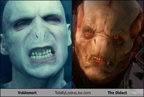 Voldemort Totally Looks Like The Didact