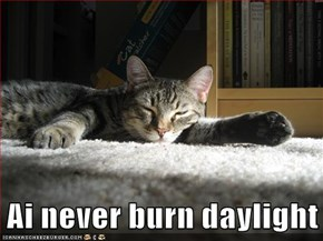 Ai Never Burn Daylight