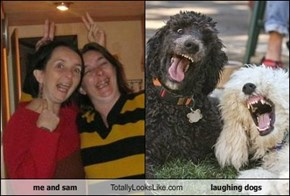 me and sam Totally Looks Like laughing dogs