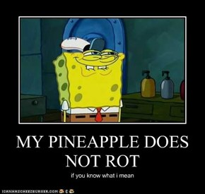 MY PINEAPPLE DOES NOT ROT