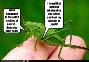 elizabuff's updated version of Aesop's Fable The Ant and the Grasshopper