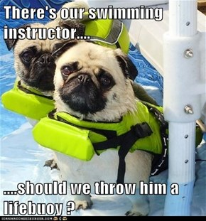 There's Our Swimming Instructor....