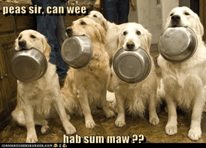 peas sir, can wee  hab sum maw ??