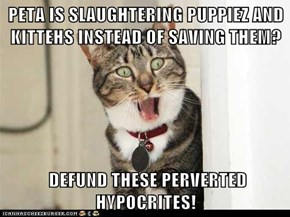 PETA IS SLAUGHTERING PUPPIEZ AND KITTEHS INSTEAD OF SAVING THEM?   DEFUND THESE PERVERTED HYPOCRITES!