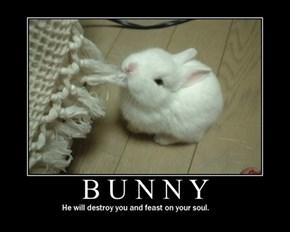 Damn Those Bunnies