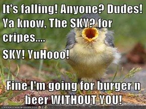 It's falling! Anyone? Dudes! Ya know, The SKY? for cripes.... SKY! YuHooo! Fine I'm going for burger n beer WITHOUT YOU!