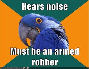 Hears noise  Must be an armed robber