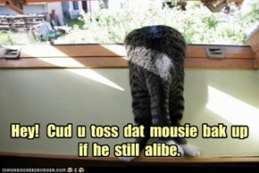Hey!   Cud  u  toss  dat  mousie  bak  up  if  he  still  alibe.