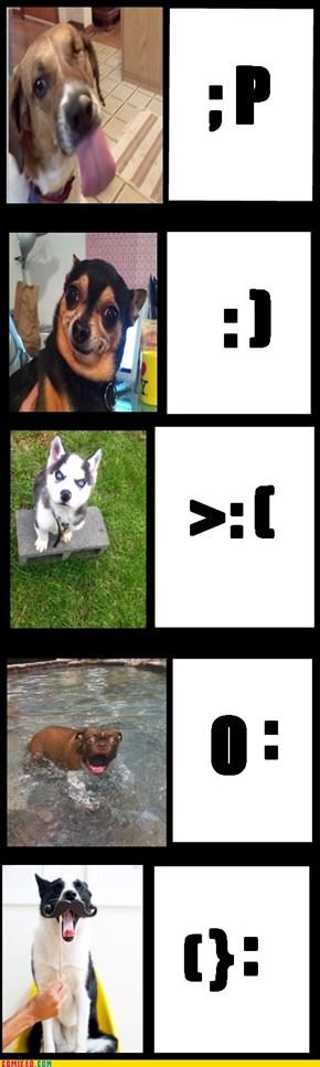 Dog emotionconz...