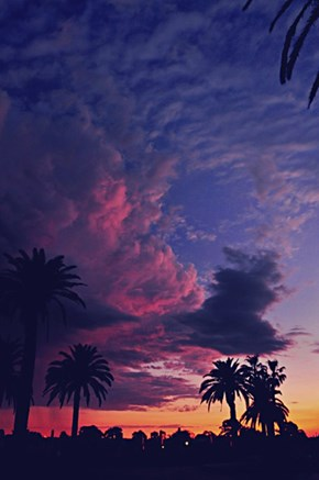 Neon Skies