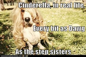 Cinderella, in real life,  Every bit as Dawg  As the step sisters