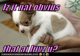 Iz it nat obvius  that ai luvz u?