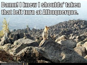 Damn! I knew I shoulda' taken that left turn at Albuquerque.