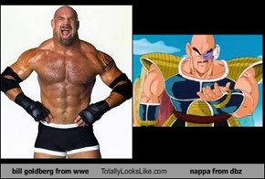 bill goldberg from wwe Totally Looks Like nappa from dbz