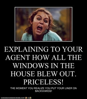 EXPLAINING TO YOUR AGENT HOW ALL THE WINDOWS IN THE HOUSE BLEW OUT. PRICELESS!