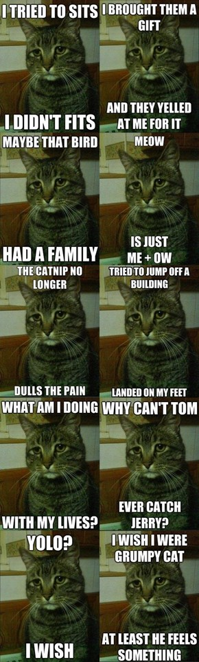 Best of Depressed Cat Meme