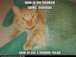 Fanks, Hooman