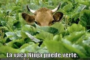 La vaca Ninja puede verte.